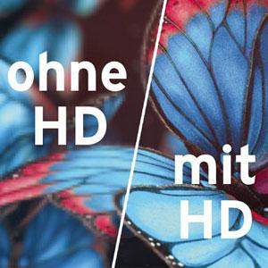 Fernsehen: HD oder reicht auch SD?